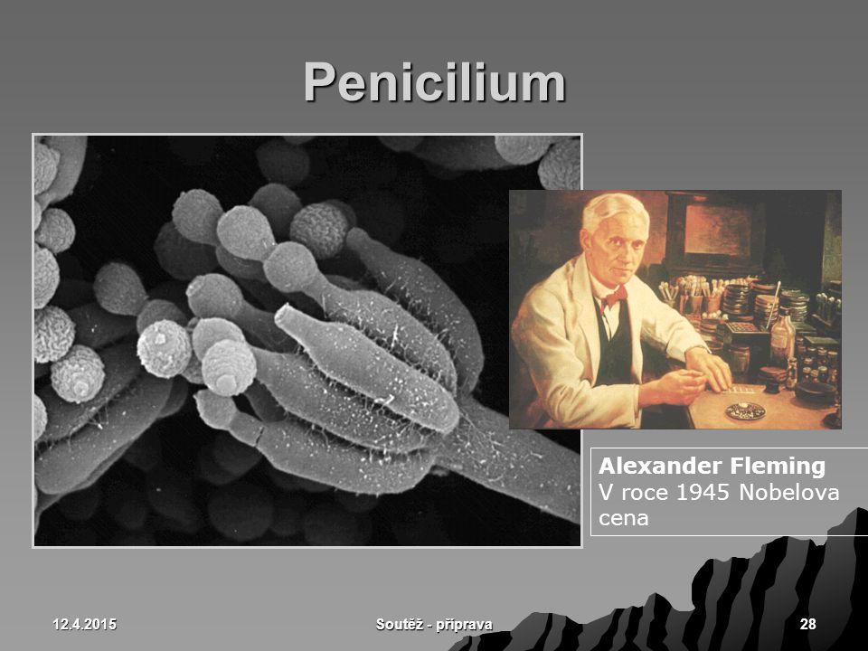 12.4.2015 Soutěž - příprava 28 Penicilium Alexander Fleming V roce 1945 Nobelova cena