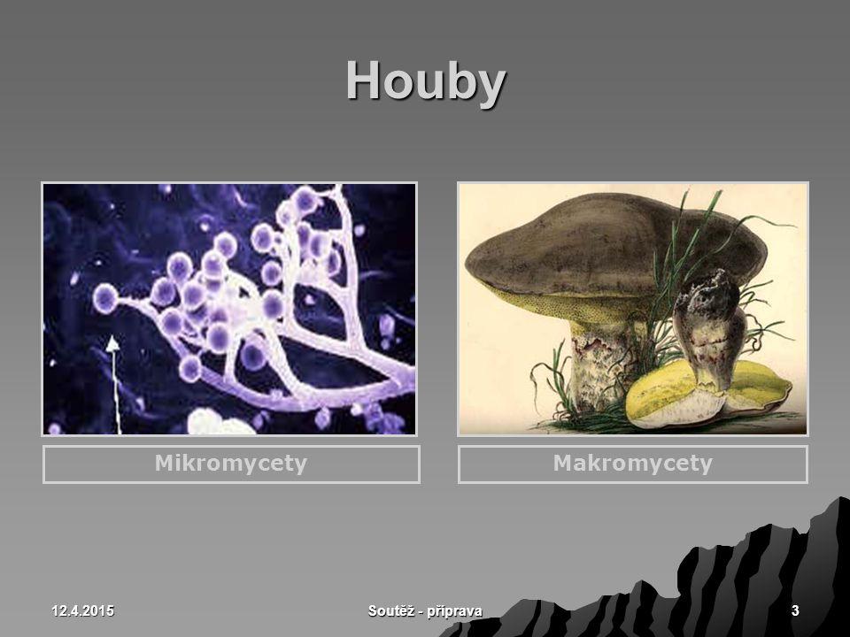 12.4.2015 Soutěž - příprava 34 Stopkovýtrusé houby s rouškem  Rouško – hymenium je výtrusorodá vrstva –Rourkaté – hřib pravý (1) –Lupenité – pečárka polní (2) 12