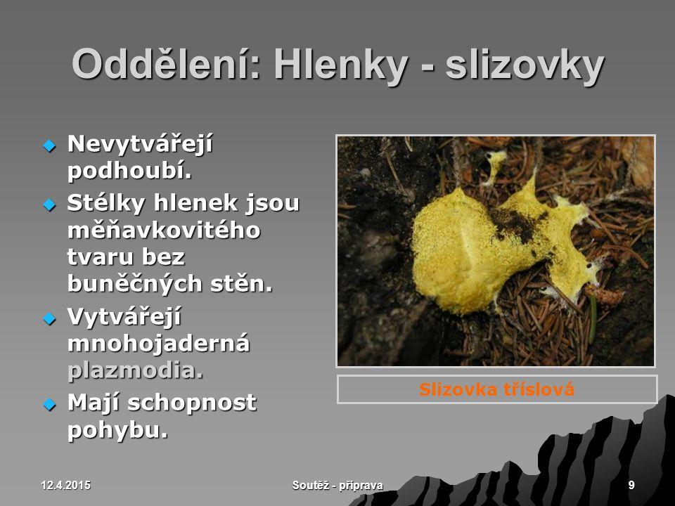 12.4.2015 Soutěž - příprava 10 Hlenky - nádorovka kapustová  Původce nádorovitosti košťálovin