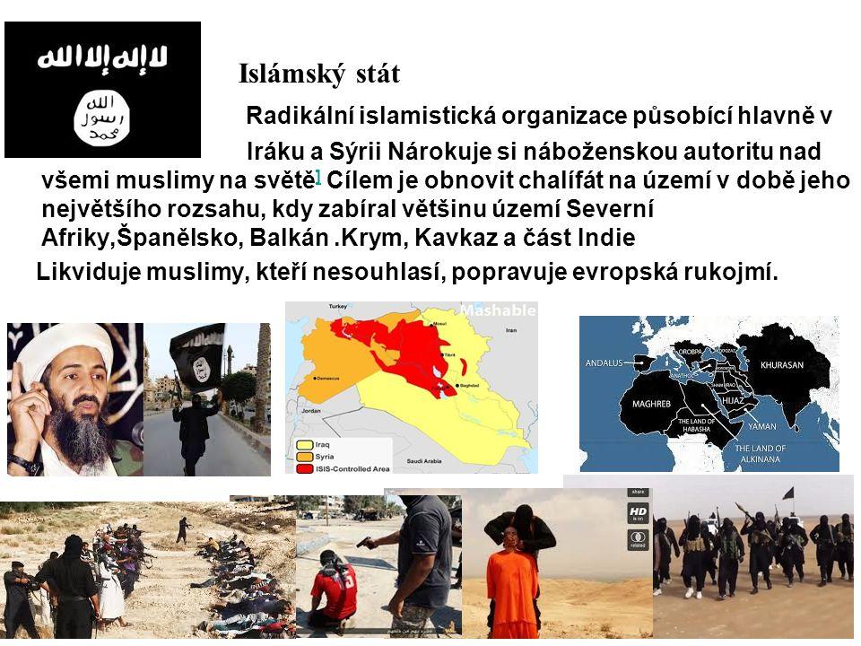 Islámský stát Radikální islamistická organizace působící hlavně v Iráku a Sýrii Nárokuje si náboženskou autoritu nad všemi muslimy na světě ] Cílem je