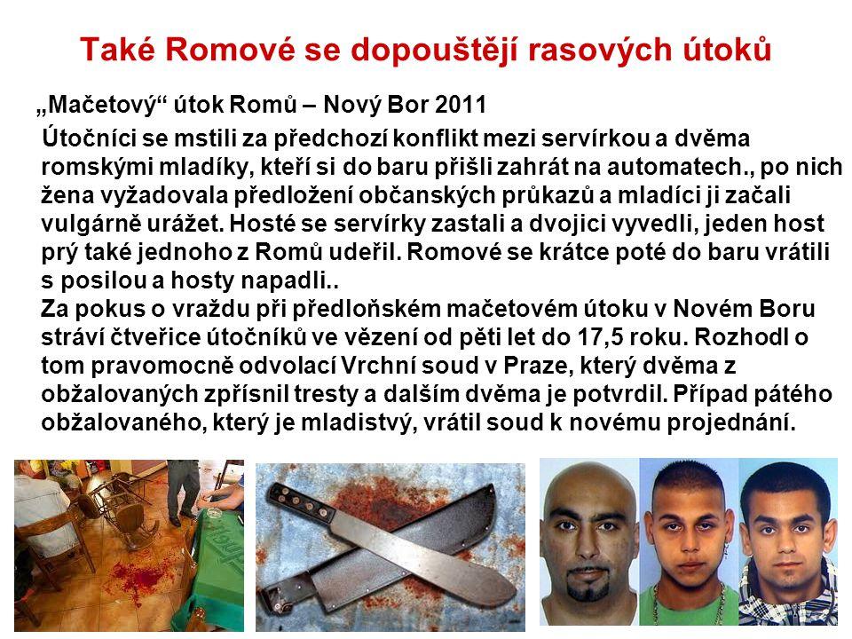 """Také Romové se dopouštějí rasových útoků """"Mačetový"""" útok Romů – Nový Bor 2011 Útočníci se mstili za předchozí konflikt mezi servírkou a dvěma romskými"""