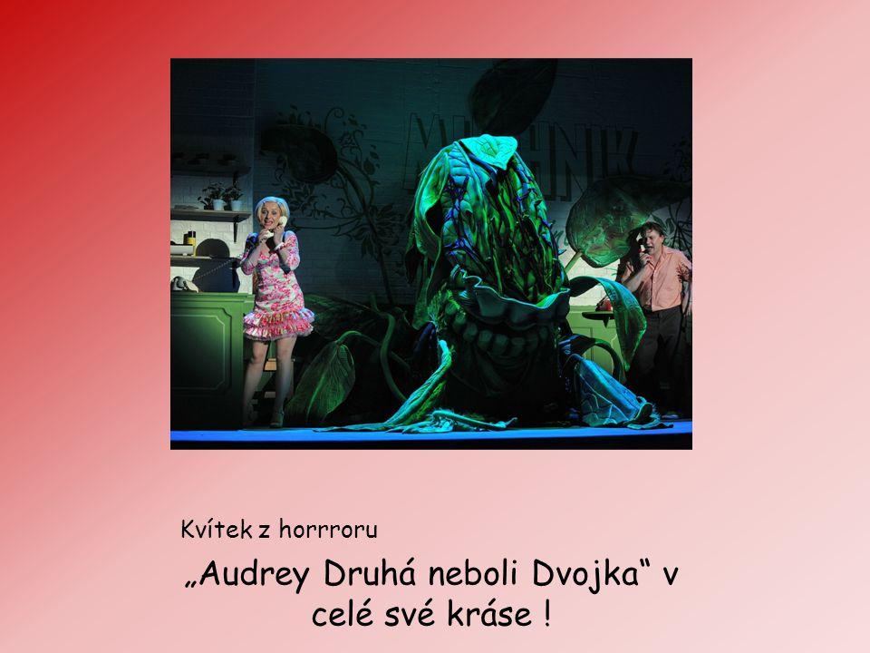 """Kvítek z horrroru """"Audrey Druhá neboli Dvojka"""" v celé své kráse !"""
