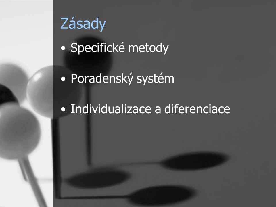 Zásady Specifické metody Poradenský systém Individualizace a diferenciace