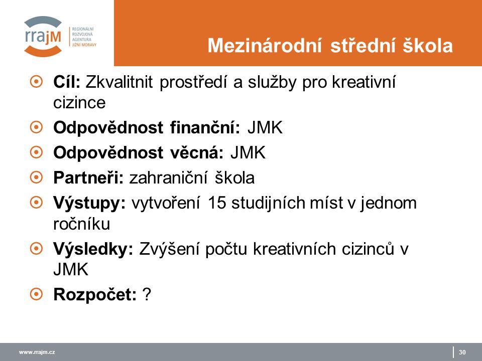www.rrajm.cz 30 Mezinárodní střední škola  Cíl: Zkvalitnit prostředí a služby pro kreativní cizince  Odpovědnost finanční: JMK  Odpovědnost věcná:
