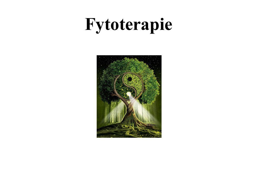 Fytoterapie