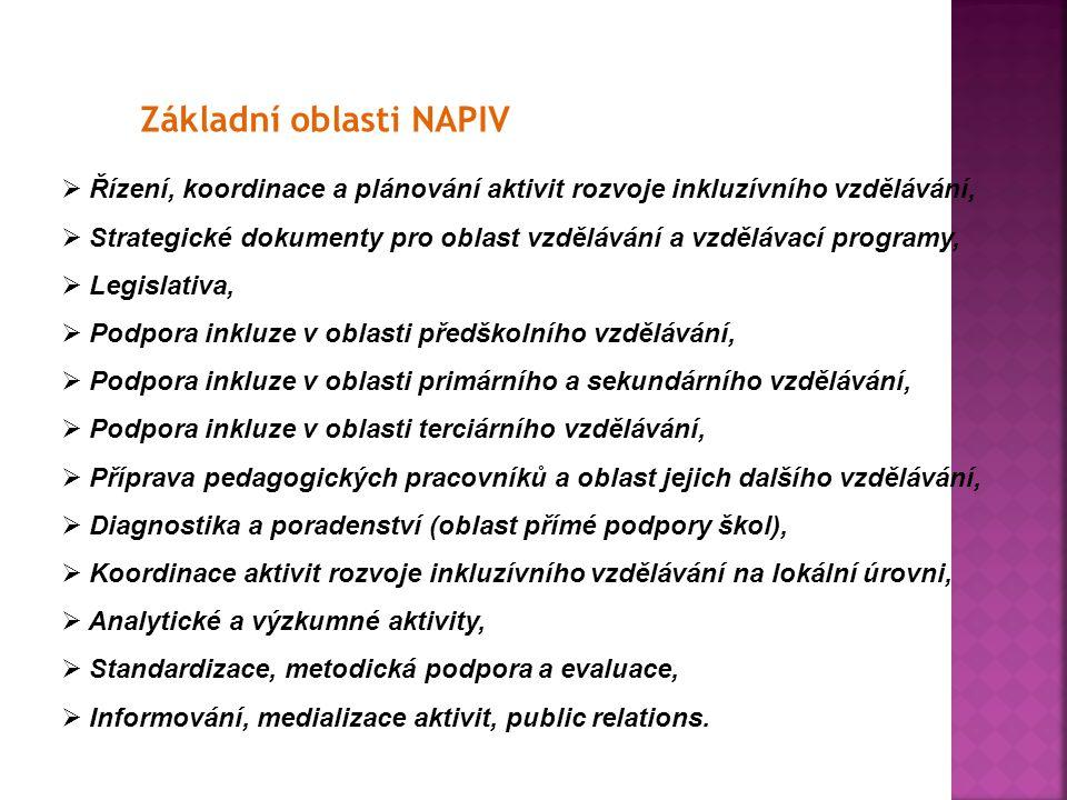 Základní oblasti NAPIV  Řízení, koordinace a plánování aktivit rozvoje inkluzívního vzdělávání,  Strategické dokumenty pro oblast vzdělávání a vzděl