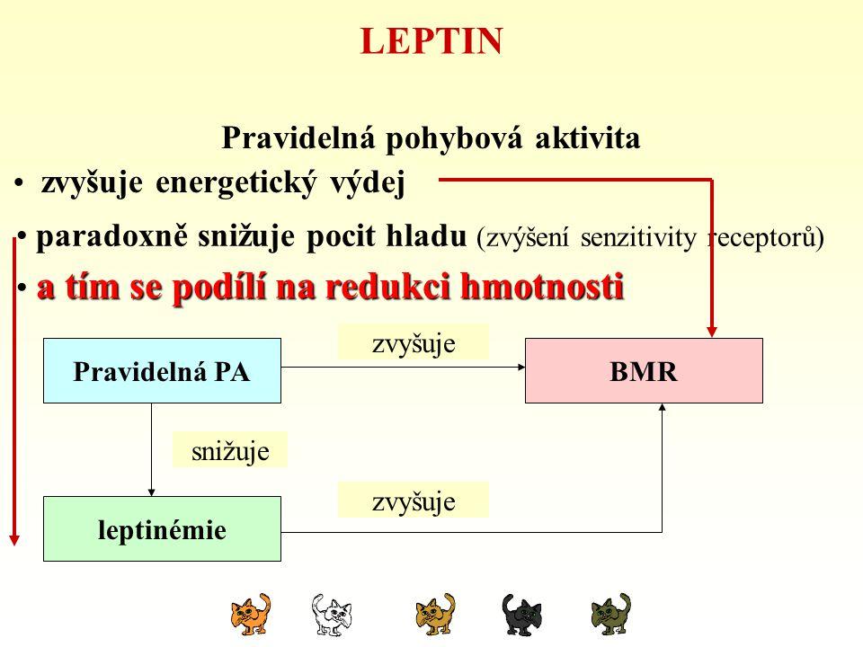 LEPTIN Pravidelná pohybová aktivita zvyšuje energetický výdej hypokinezeBMR leptinémie snižuje zvyšuje snižuje Pravidelná PA zvyšuje snižuje zvyšuje p