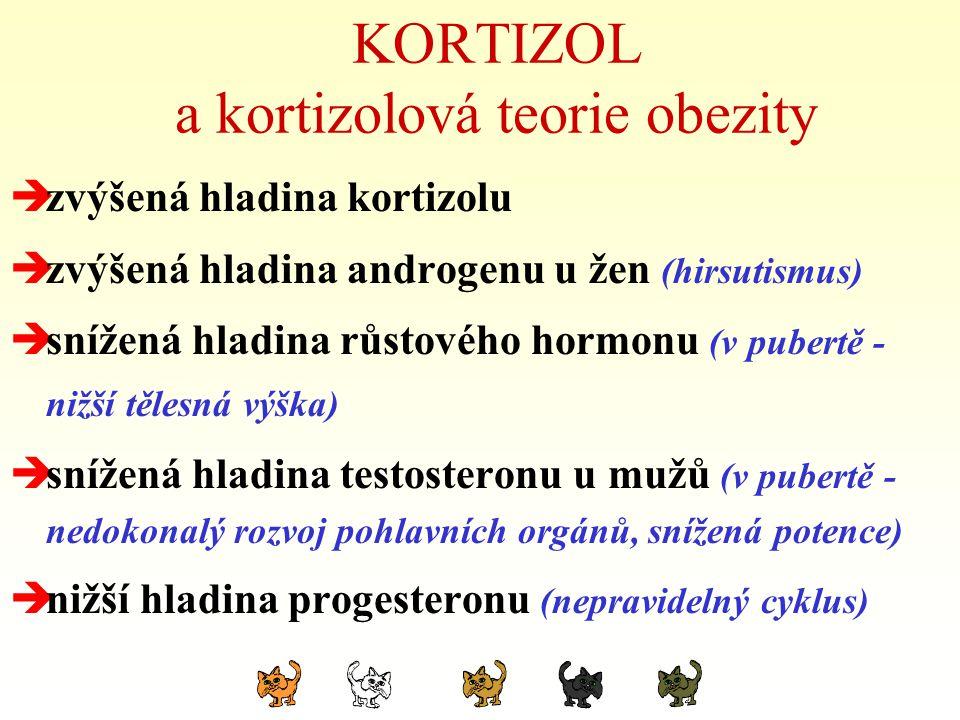 KORTIZOL a kortizolová teorie obezity  zvýšená hladina kortizolu  zvýšená hladina androgenu u žen (hirsutismus)  snížená hladina růstového hormonu