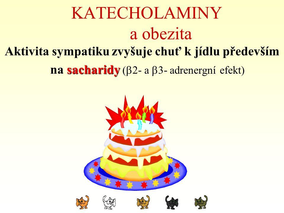 KATECHOLAMINY a obezita Aktivita sympatiku zvyšuje chuť k jídlu především na sacharidy (  2- a  3- adrenergní efekt)