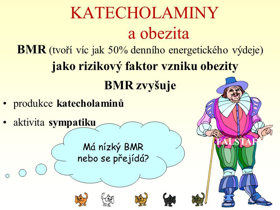 KATECHOLAMINY a obezita BMR (tvoří víc jak 50% denního energetického výdeje) jako rizikový faktor vzniku obezity BMR zvyšuje produkce katecholaminů ak