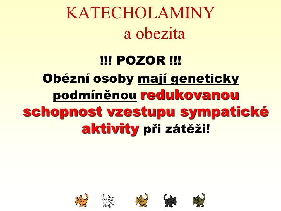 KATECHOLAMINY a obezita !!! POZOR !!! Obézní osoby mají geneticky podmíněnou redukovanou schopnost schopnost vzestupu sympatické aktivity aktivity při