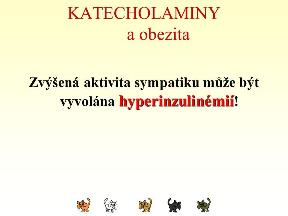 KATECHOLAMINY a obezita Zvýšená aktivita sympatiku může být vyvolána hyperinzulinémií hyperinzulinémií !
