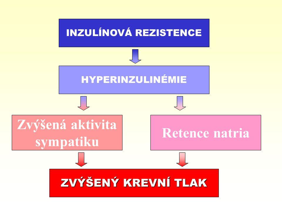 INZULÍNOVÁ REZISTENCE HYPERINZULINÉMIE Zvýšená aktivita sympatiku Retence natria ZVÝŠENÝ KREVNÍ TLAK