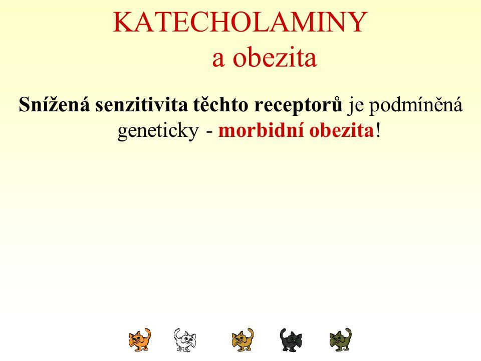 KATECHOLAMINY a obezita Snížená senzitivita těchto receptorů je podmíněná geneticky - morbidní obezita!