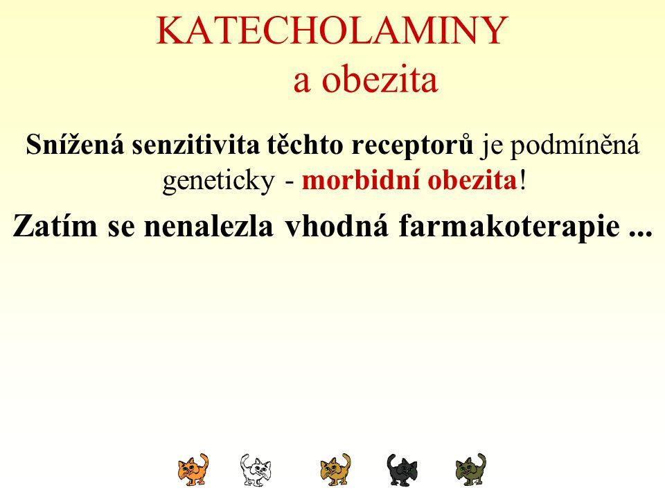 KATECHOLAMINY a obezita Snížená senzitivita těchto receptorů je podmíněná geneticky - morbidní obezita! Zatím se nenalezla vhodná farmakoterapie...