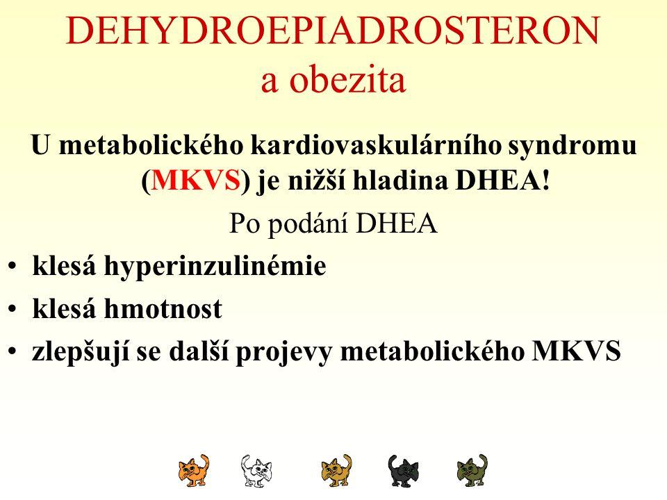 DEHYDROEPIADROSTERON a obezita U metabolického kardiovaskulárního syndromu (MKVS) je nižší hladina DHEA! Po podání DHEA klesá hyperinzulinémie klesá h