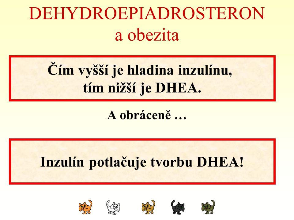 DEHYDROEPIADROSTERON a obezita A obráceně … Čím vyšší je hladina inzulínu, tím nižší je DHEA. Inzulín potlačuje tvorbu DHEA!