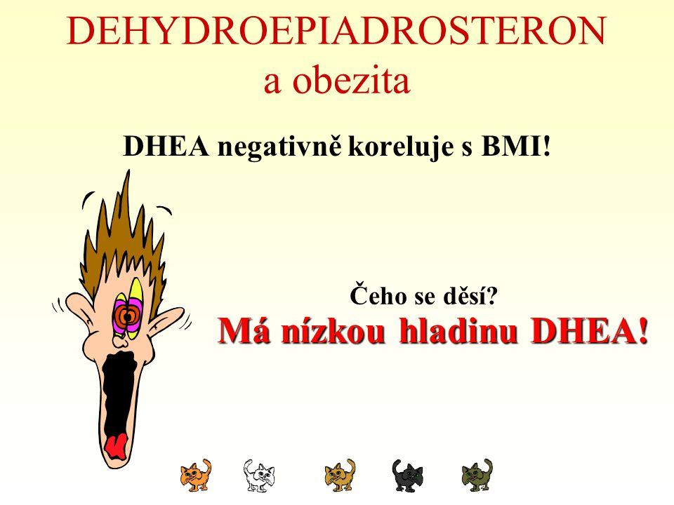 DEHYDROEPIADROSTERON a obezita DHEA negativně koreluje s BMI! Čeho se děsí? Má nízkou hladinu DHEA!