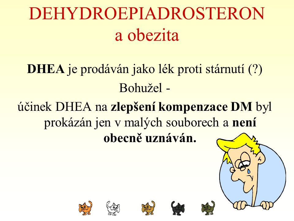 DEHYDROEPIADROSTERON a obezita DHEA je prodáván jako lék proti stárnutí (?) Bohužel - účinek DHEA na zlepšení kompenzace DM byl prokázán jen v malých