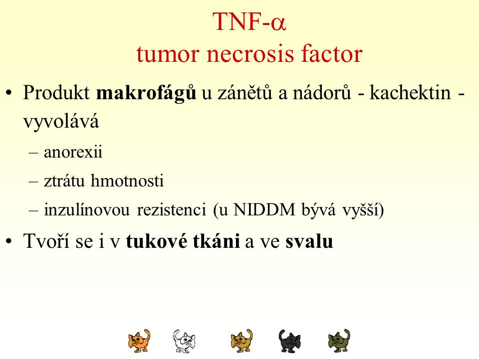 TNF-  tumor necrosis factor Produkt makrofágů u zánětů a nádorů - kachektin - vyvolává –anorexii –ztrátu hmotnosti –inzulínovou rezistenci (u NIDDM b
