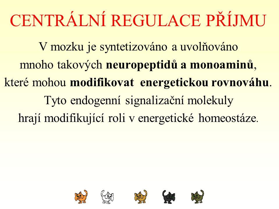 CENTRÁLNÍ REGULACE PŘÍJMU V mozku je syntetizováno a uvolňováno mnoho takových neuropeptidů a monoaminů, které mohou modifikovat energetickou rovnováh
