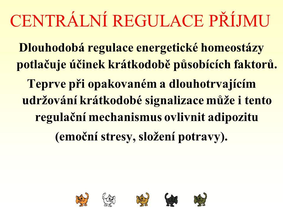 CENTRÁLNÍ REGULACE PŘÍJMU Dlouhodobá regulace energetické homeostázy potlačuje účinek krátkodobě působících faktorů. Teprve při opakovaném a dlouhotrv
