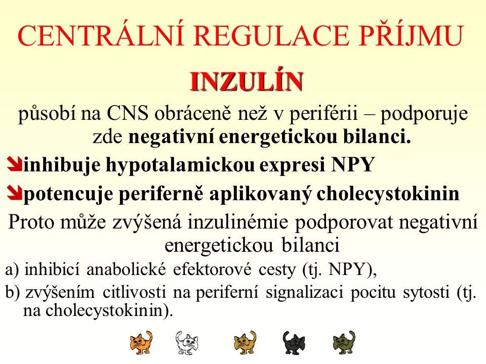 CENTRÁLNÍ REGULACE PŘÍJMU INZULÍN INZULÍN působí na CNS obráceně než v periférii – podporuje zde negativní energetickou bilanci.  inhibuje hypotalami