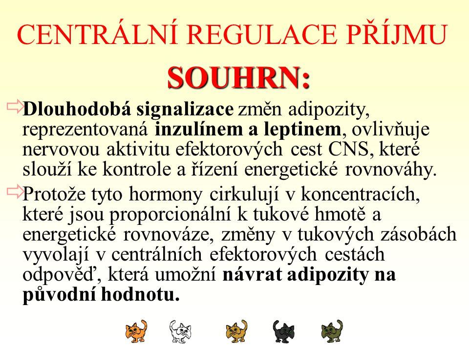 CENTRÁLNÍ REGULACE PŘÍJMU SOUHRN: SOUHRN:  Dlouhodobá signalizace změn adipozity, reprezentovaná inzulínem a leptinem, ovlivňuje nervovou aktivitu ef