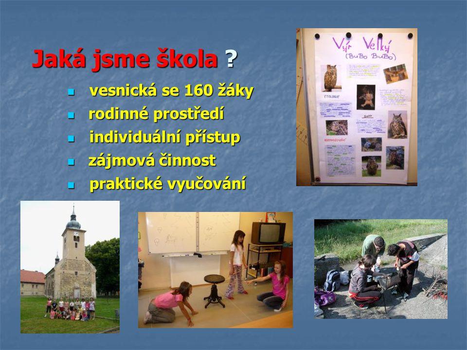 Praktické vyučování Projekty Projekty Projektový rok Projektový rok Loni Loni letos letos Zaměřené na čtenářskou gramotnost Zaměřené na čtenářskou gramotnost Povídání o pejskovi a kočičce (1.