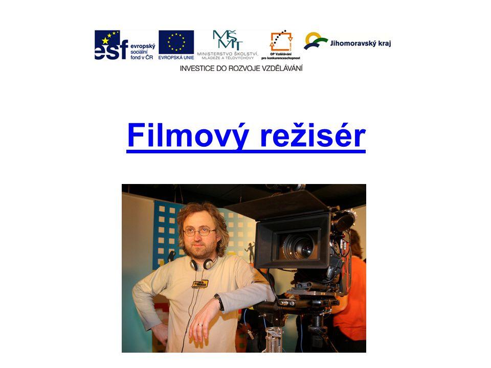 Filmový režisér