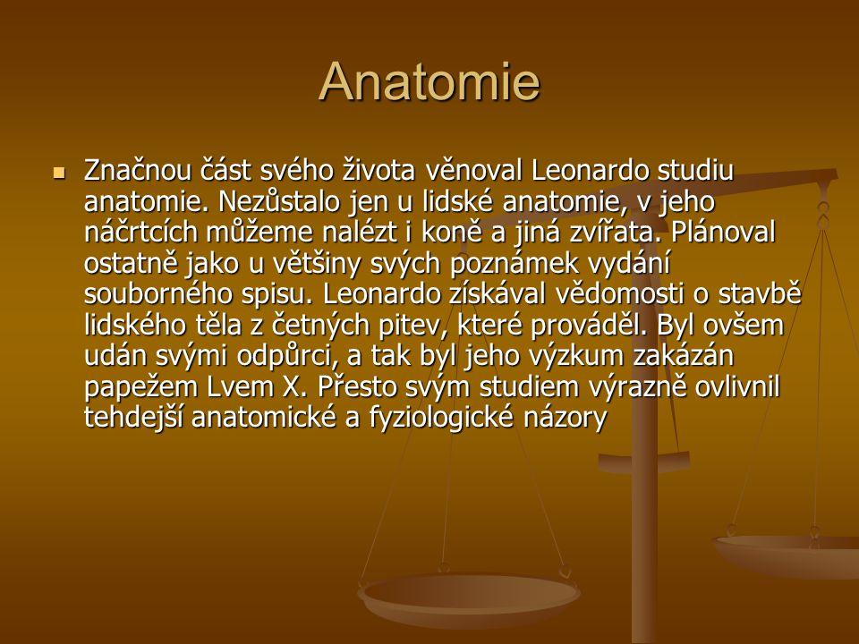 Anatomie Značnou část svého života věnoval Leonardo studiu anatomie. Nezůstalo jen u lidské anatomie, v jeho náčrtcích můžeme nalézt i koně a jiná zví