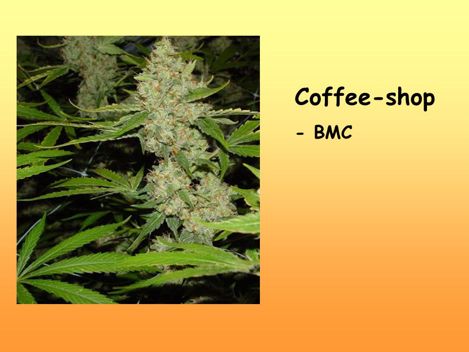 Coffee-shop - BMC