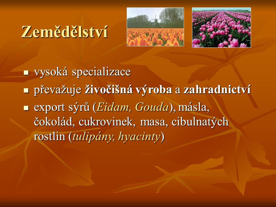 Zemědělství vysoká specializace vysoká specializace převažuje živočišná výroba a zahradnictví převažuje živočišná výroba a zahradnictví export sýrů (E