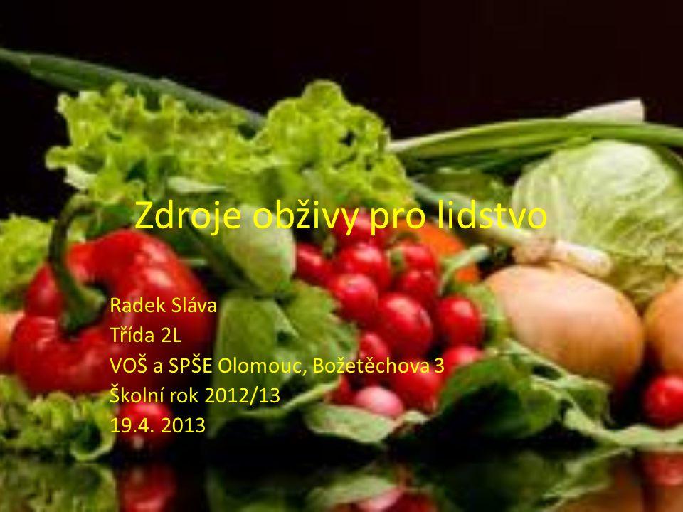 Zdroje obživy pro lidstvo Radek Sláva Třída 2L VOŠ a SPŠE Olomouc, Božetěchova 3 Školní rok 2012/13 19.4.