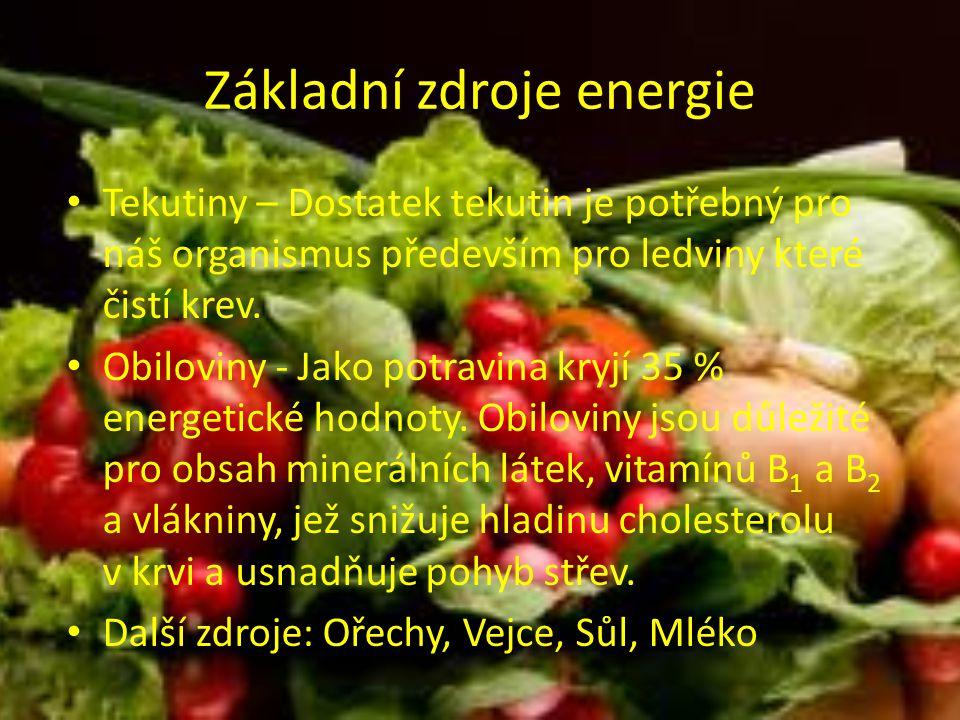 Základní zdroje energie Tekutiny – Dostatek tekutin je potřebný pro náš organismus především pro ledviny které čistí krev.