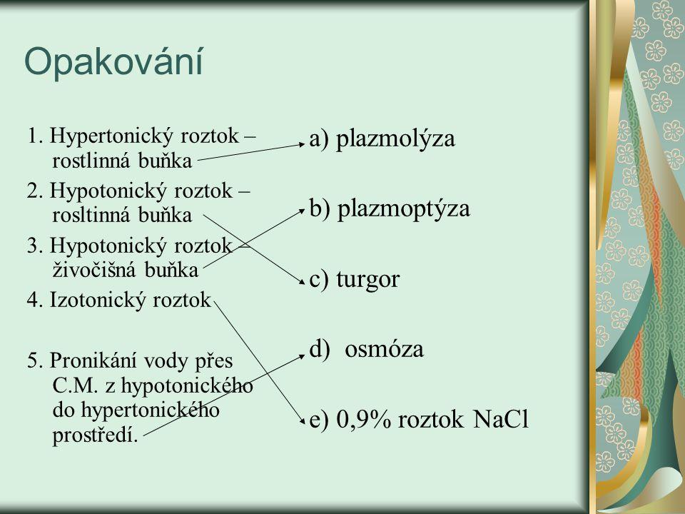 Opakování 1. Hypertonický roztok – rostlinná buňka 2.