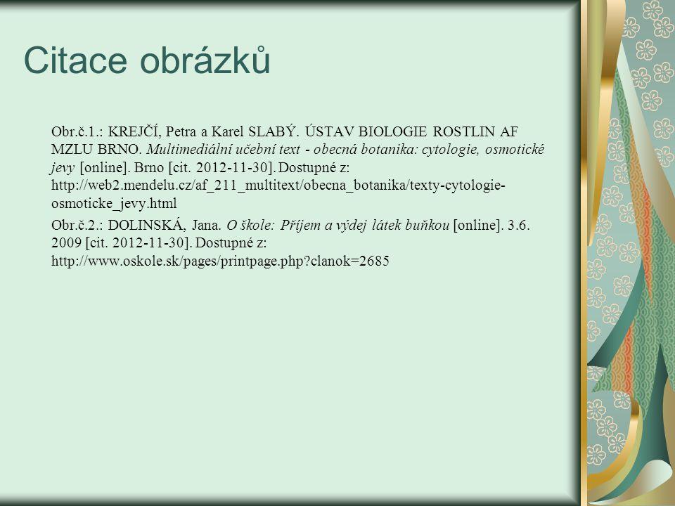 Citace obrázků Obr.č.1.: KREJČÍ, Petra a Karel SLABÝ.
