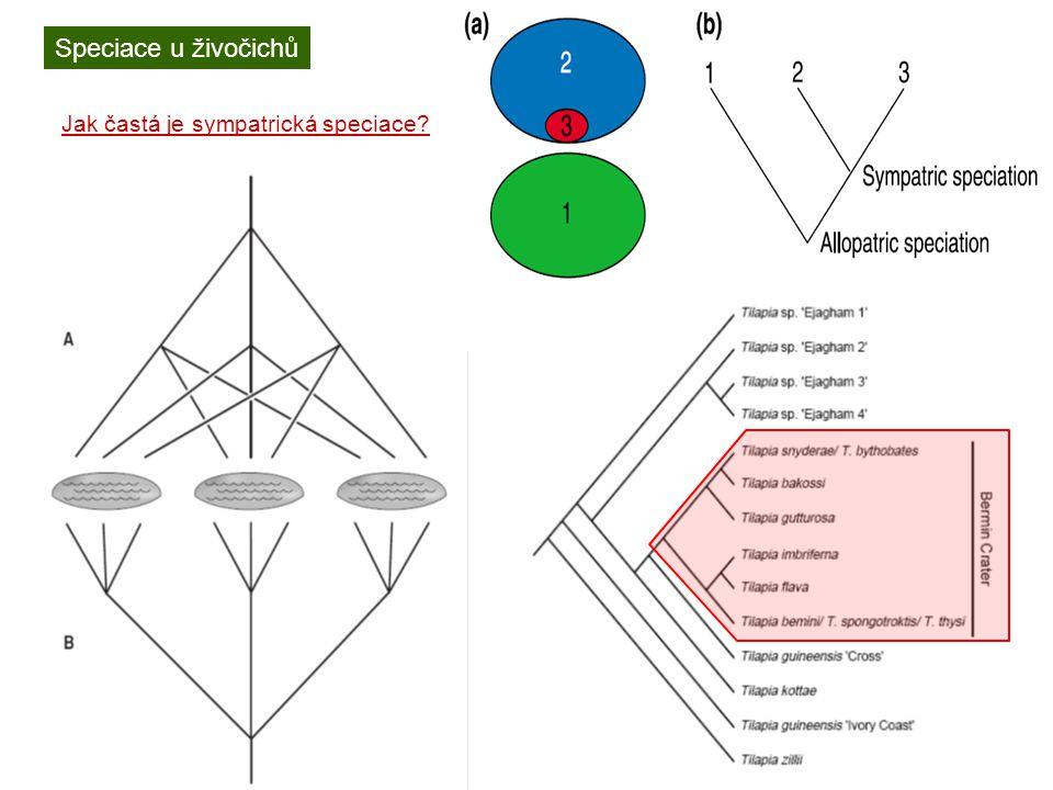 Speciace u živočichů Jak častá je sympatrická speciace?