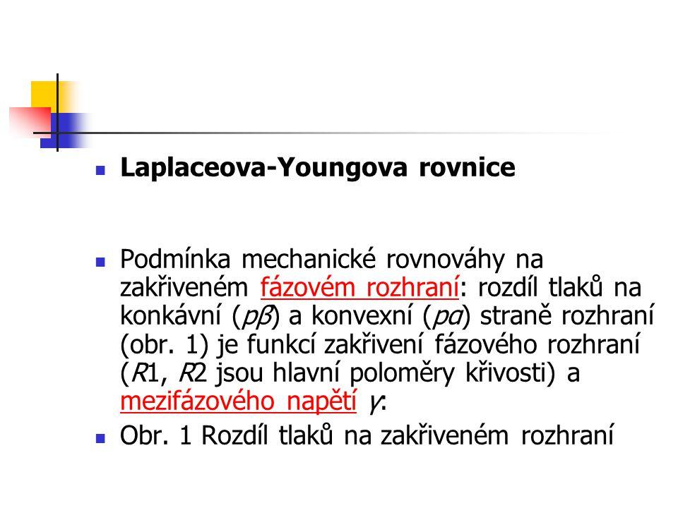 Laplaceova-Youngova rovnice