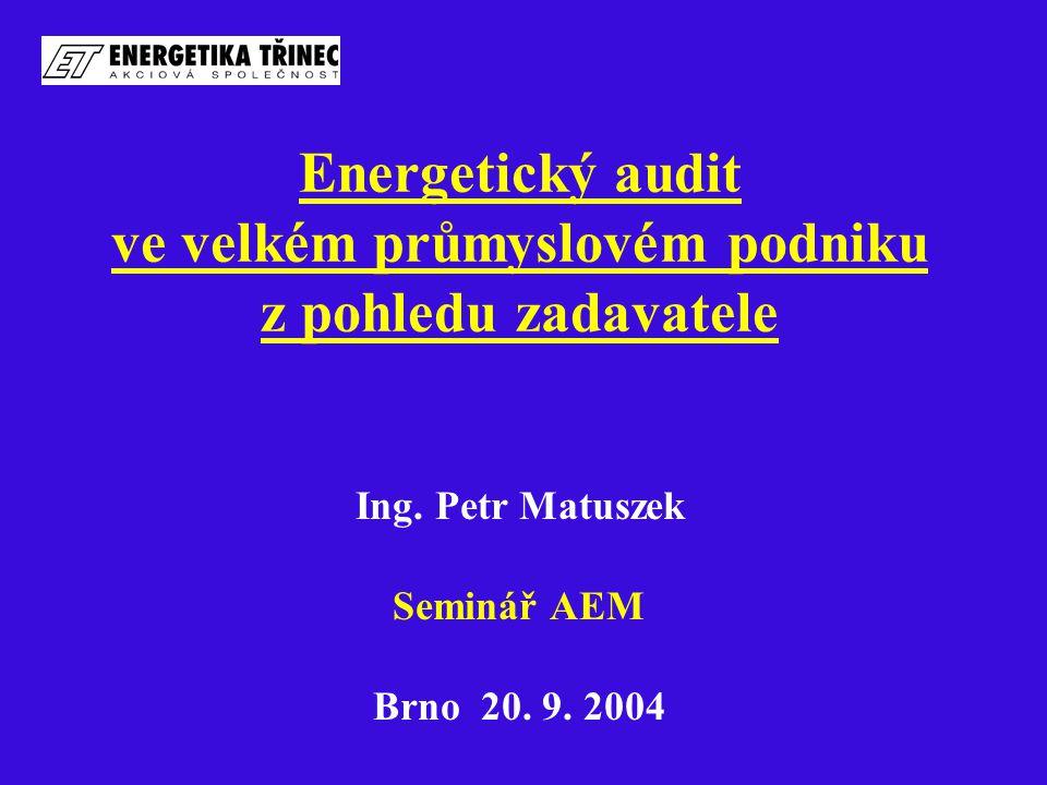 Energetický audit ve velkém průmyslovém podniku z pohledu zadavatele Ing.