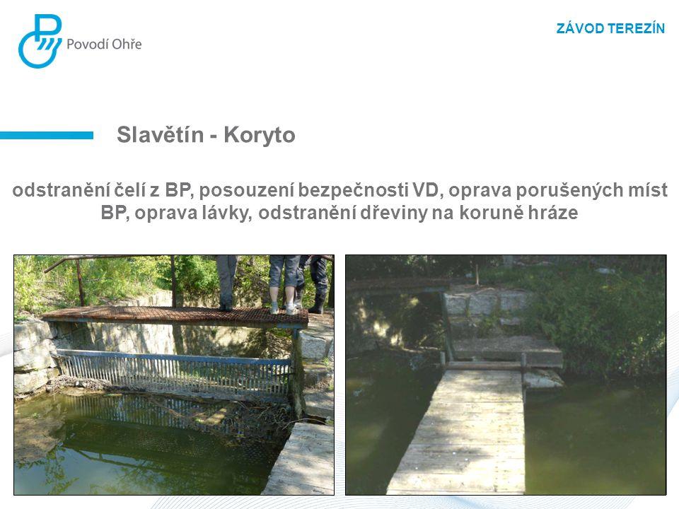 Slavětín - Koryto odstranění čelí z BP, posouzení bezpečnosti VD, oprava porušených míst BP, oprava lávky, odstranění dřeviny na koruně hráze ZÁVOD TE
