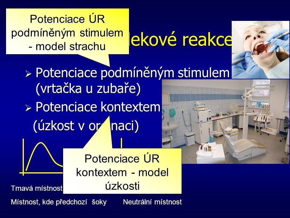 Potenciace úlekové reakce Amplituda ÚR po podmíněném stimulu Amplituda ÚR v klidu Potenciace úlekové reakce = Podmíněný stimulusNepodmíněný stimulus