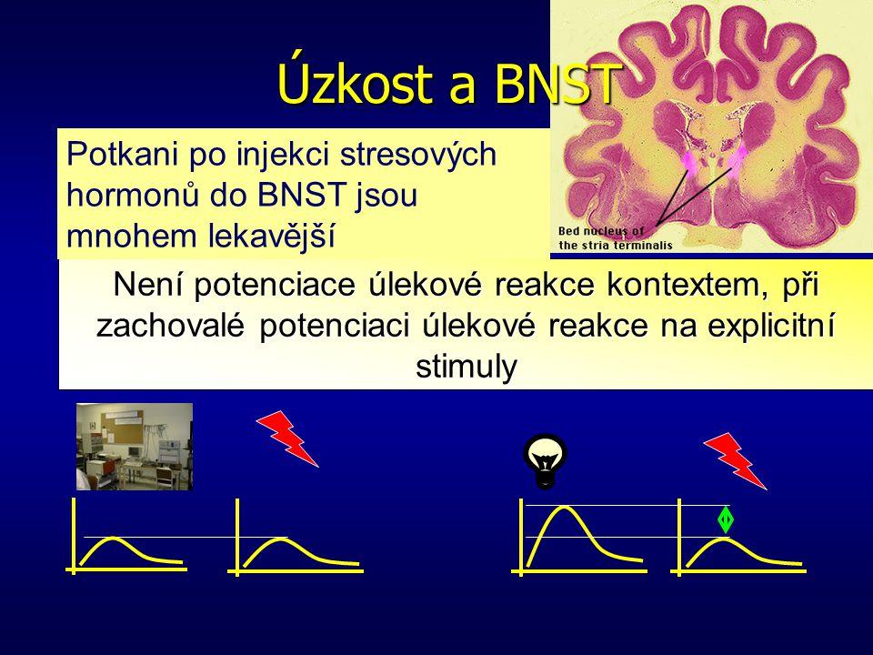 Léze centrálního jádra amygdaly Amygdala Strach a amygdala Potenciace kontextem Potenciace stimulem Není potenciace úlekové reakce na explicitní stimu