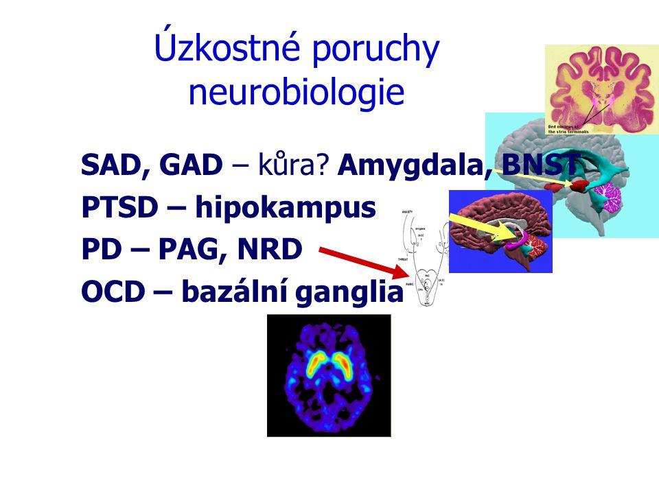 Úzkostné poruchy  Heterogenní skupina  Rozdílný – Evoluční význam – Fenotyp – Neurobiologie – Podíl kognitivního zpracování Léčba