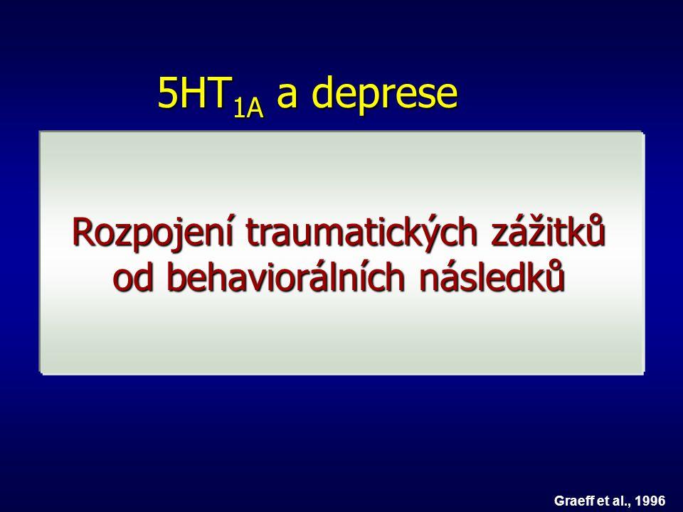 Význam 5HT 1A 5HT1 A antagonista Stres Facilitace úzkostného chování Graeff et al., 1996 SSRI 5HT1 A agonista