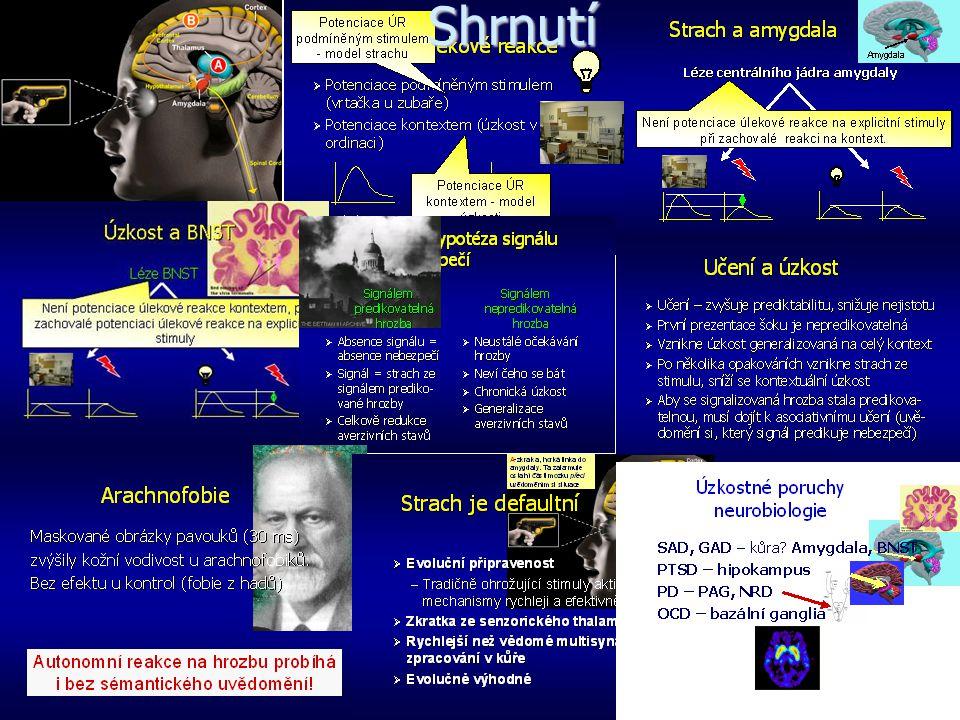 Léčebné možnosti u úzkostných poruch   Anxiolytika benzodiazepiny nebenzodiazepinová; Buspiron   Antidepresiva SSRI SNRI   Antipsychotika   Ps
