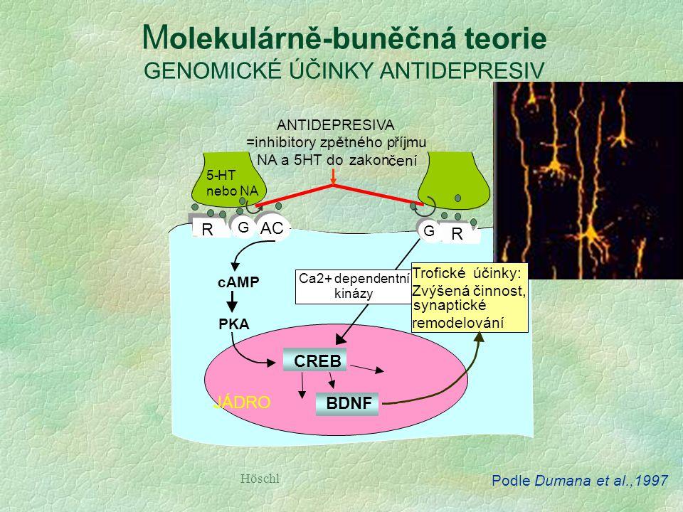 rTMS VNS KBT, IT DBS ECT Tianeptin  uptake Bupropion DARI Agomelatin +MT 1,2 ;x5HT 2C Trazodon SARI (x5HT 2C ) Ketamin (xNMDA) IPSRT fototerapie Spán