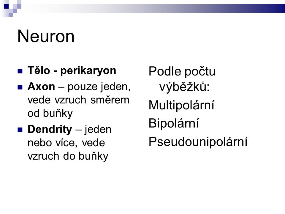 Neuron Tělo - perikaryon Axon – pouze jeden, vede vzruch směrem od buňky Dendrity – jeden nebo více, vede vzruch do buňky Podle počtu výběžků: Multipolární Bipolární Pseudounipolární
