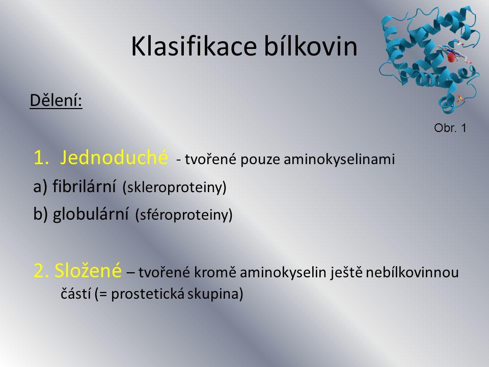 Jednoduché bílkoviny - fibrilární Peptidové řetězce jsou spojeny ve vlákna Mají hlavně stavební funkci (tkáně a buňky) Jsou nerozpustné ve vodě 1.Kolagen 2.Keratin 3.Elastin