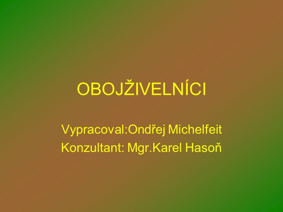 OBOJŽIVELNÍCI Vypracoval:Ondřej Michelfeit Konzultant: Mgr.Karel Hasoň